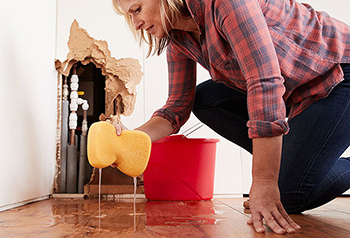 Emergency slab leak repair Little Elm Texas-woman cleaning